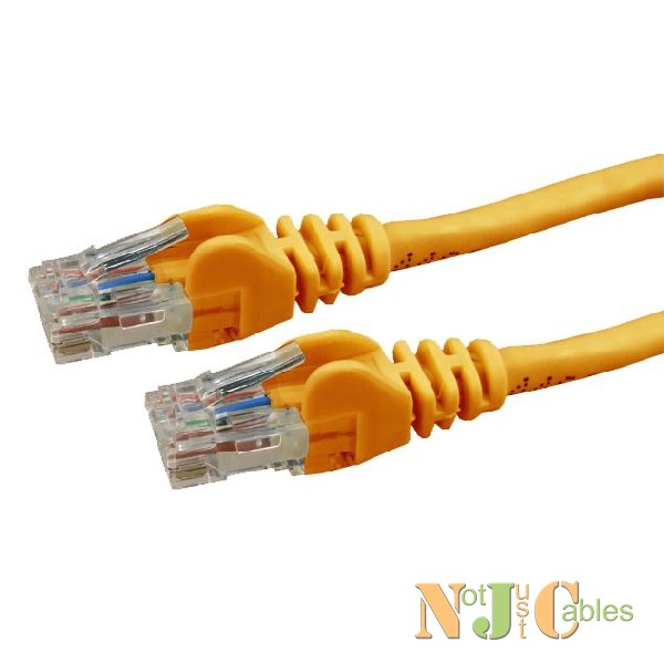 Cat6 Orange Colour