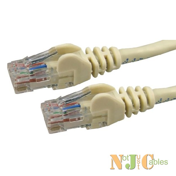 Cat6 Ivory Colour