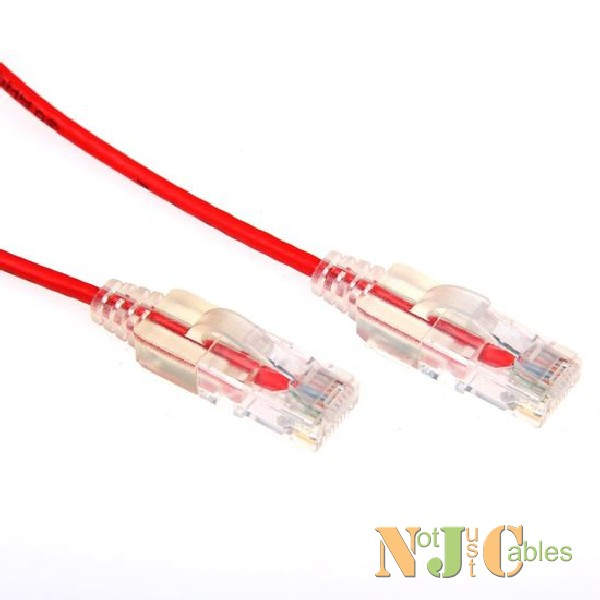Cat6 Red Colour